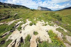 Le Plateau de l'Alpe, en Chartreuse, avec le Granier en fond