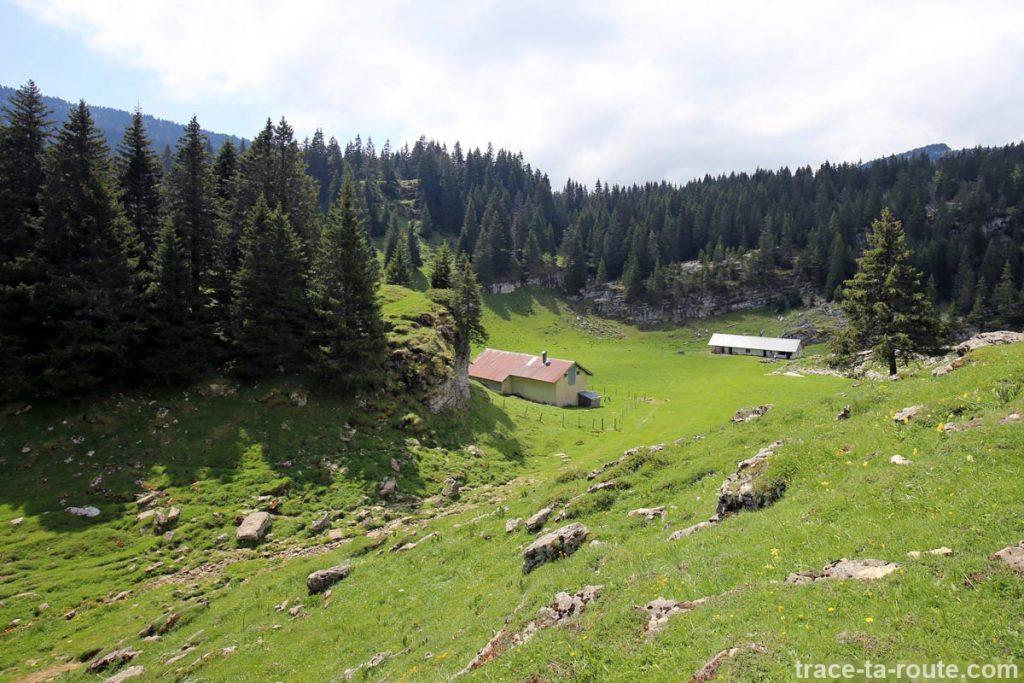 Les Cabanes de l'Alpette, sous le Pinet