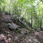 Sentier de randonnée de La Plagne vers le Col de l'Alpette