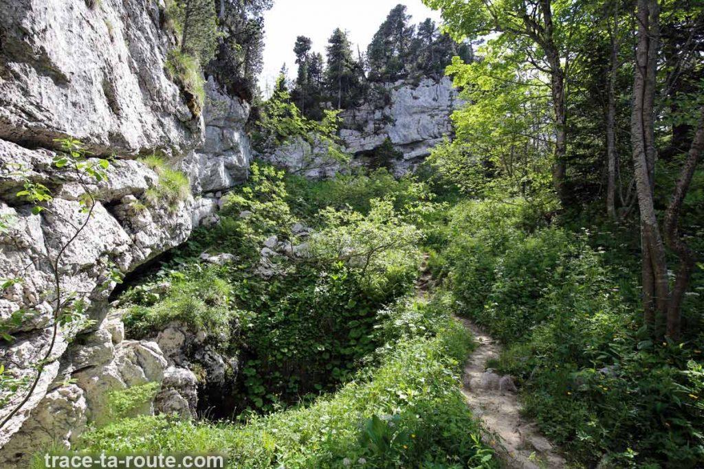 Sentier de randonnée au sommet du Pinet (Chartreuse)