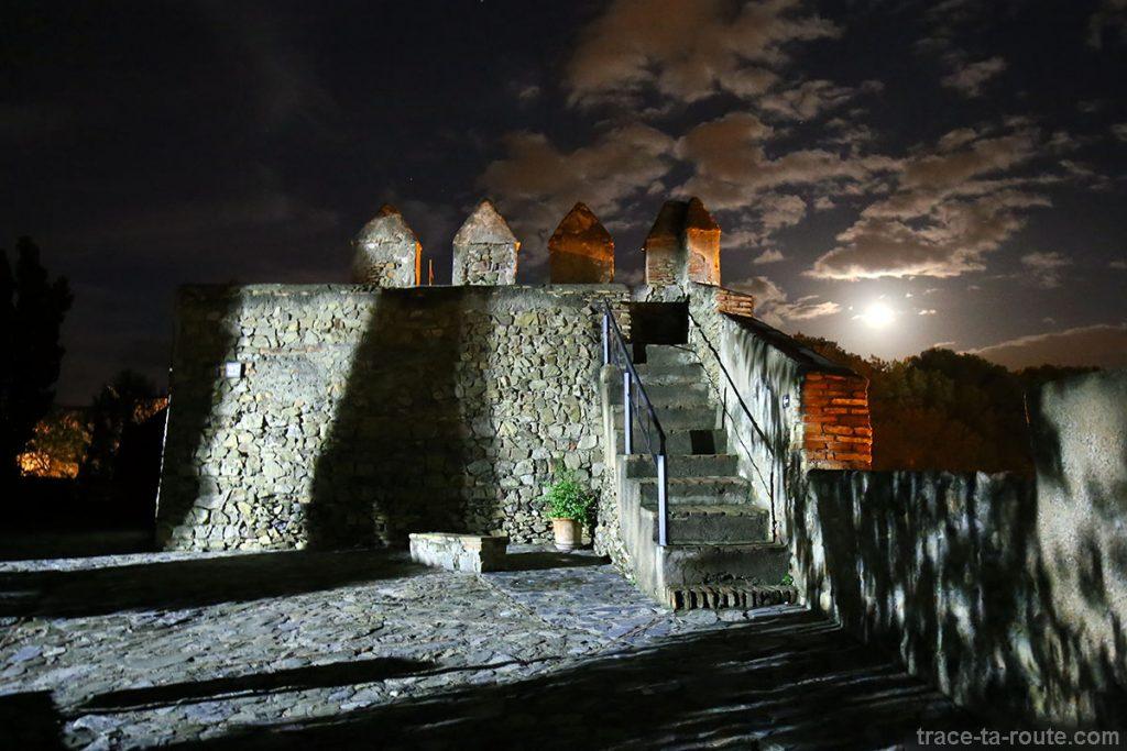 Les remparts du Castillo de Gibralfaro de Malaga