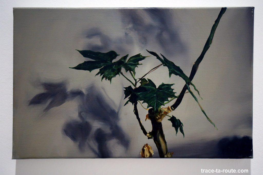 """""""Dragonplant"""" (2003) Michaël BORREMANS - Exposition """"fixture"""" au Centre d'Art Contemporain CAC Malaga"""