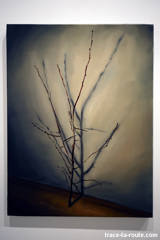 """The branch"" (2003) Michaël BORREMANS - Exposition ""fixture"" au Centre d'Art Contemporain CAC Malaga"