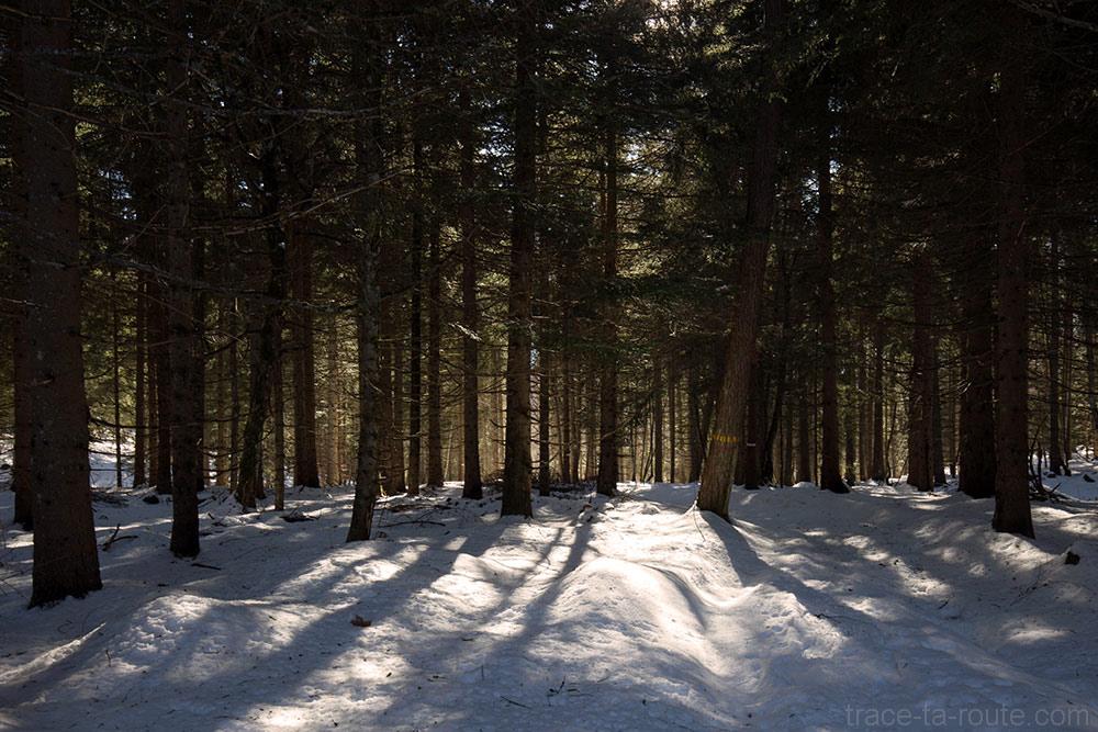 Sentier de randonnée en neige au Col de Combe Servenne - randonnée raquettes Pointe de la Galoppaz - Bauges