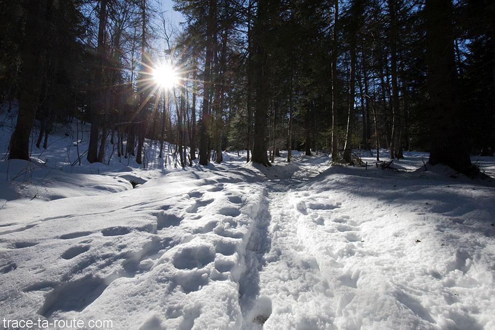 Sentier dans la Combe Servenne en neige - randonnée raquettes Pointe de la Galoppaz - Bauges