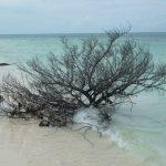 mer et plage à CUba - blog voyage