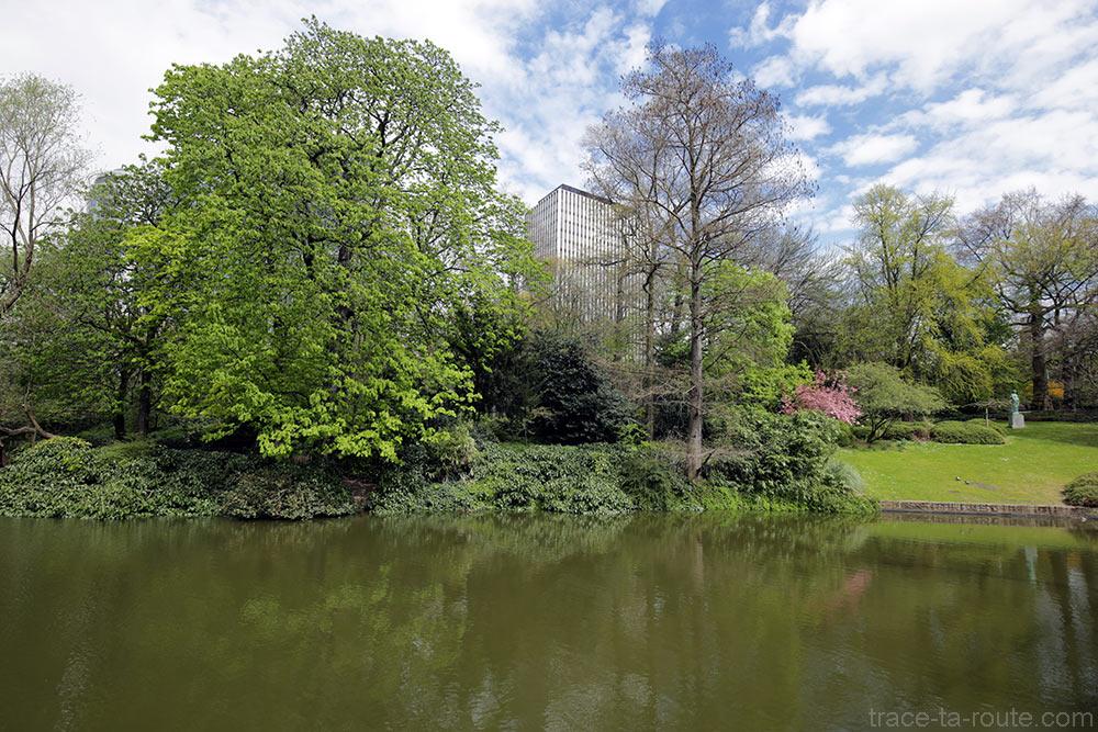 Étang dans le Jardin Botanique de Bruxelles