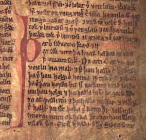 Saga islandaise - extrait de la Saga de Njáll le Brûlé (Möðruvallabók f13r)