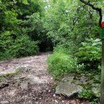 Sentier itinéraire de randonnée à la Croix du Nivolet par le Pas de l'Échelle depuis Lovettaz