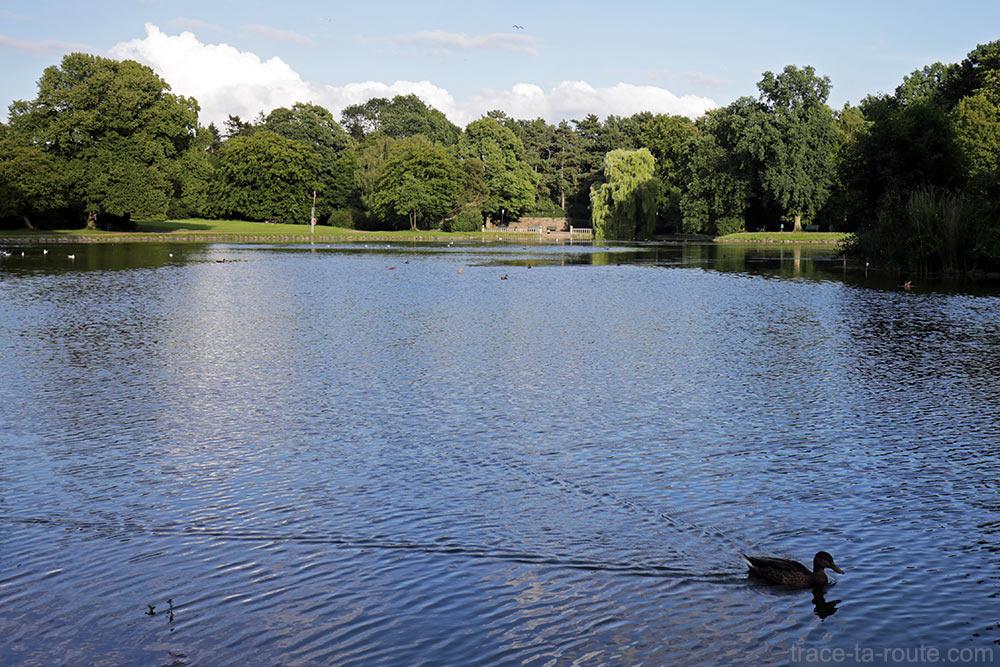 Lac dans le parc Slottsparken de Malmö en Suède