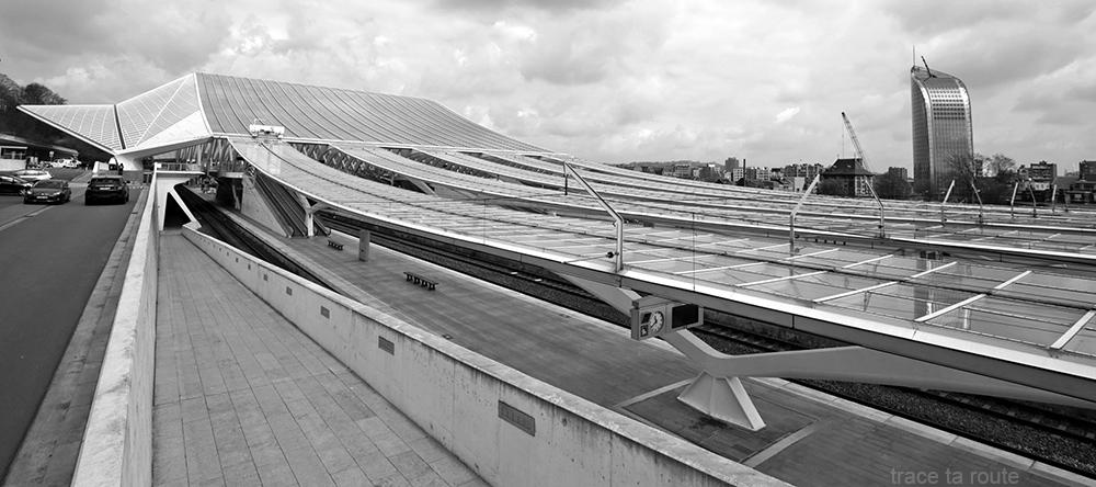 Gare des Guillemins Liège - Santiago Calatrava