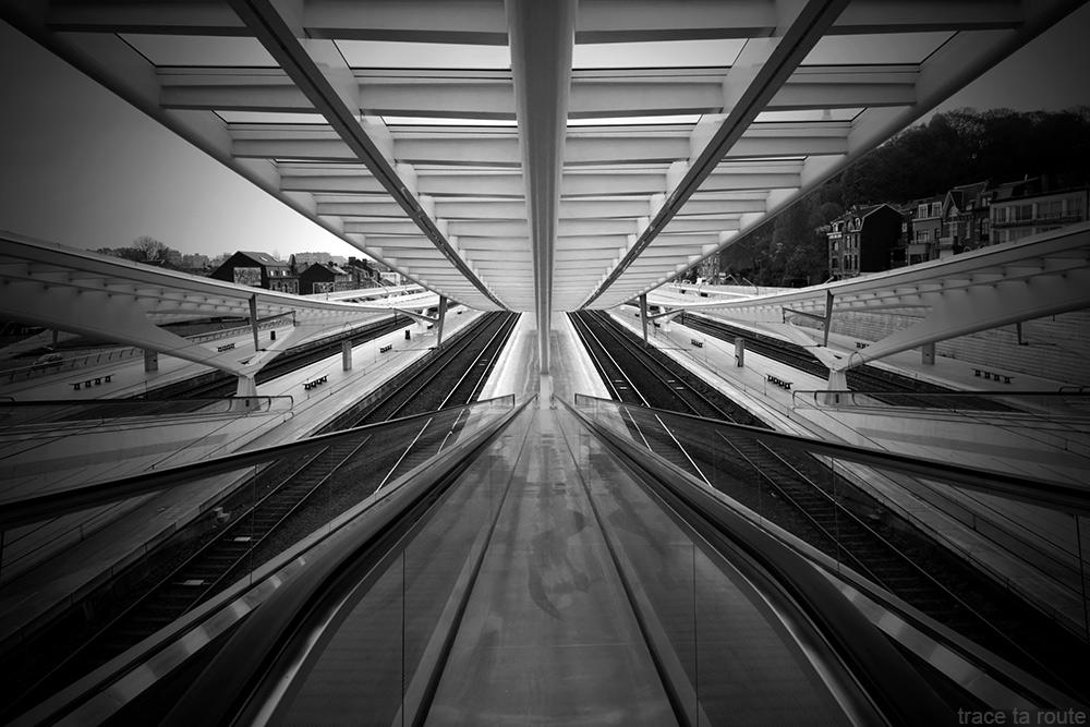 Rails et quais - Gare des Guillemins Liège - Santiago Calatrava