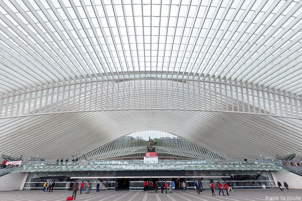 Architecture Gare des Guillemins Liège - Santiago Calatrava - Entrée Toit voute en verre