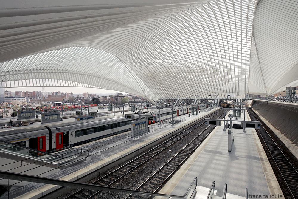 Architecture Gare des Guillemins Liège - Santiago Calatrava - Quais trains Toit voute en verre