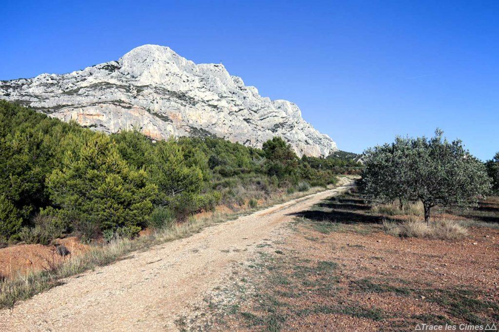 Sentier de randonnée et oliveraie au pied de La Montagne Sainte-Victoire et la Croix de Provence