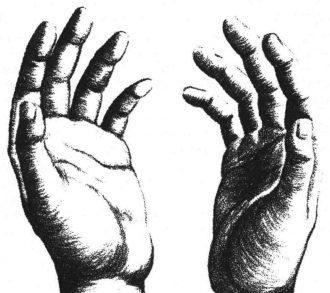 mains - Vinatix