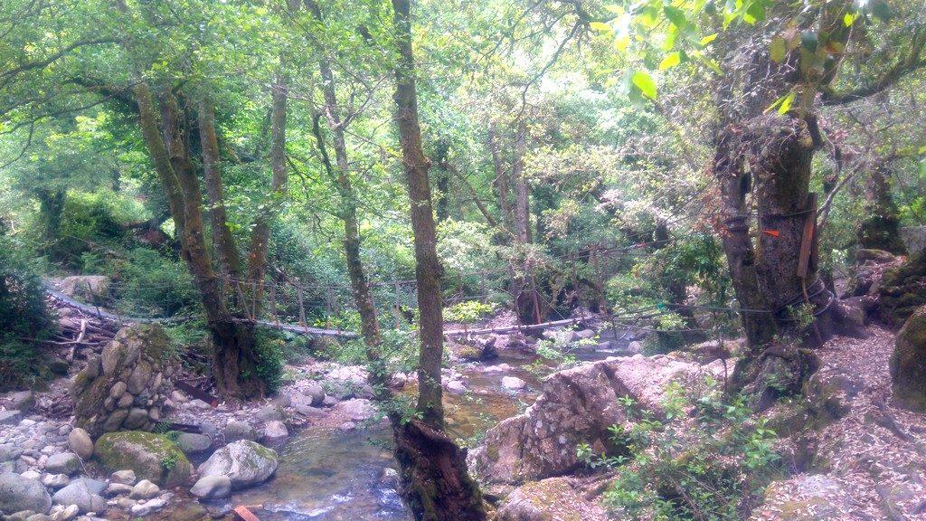 Pont suspendu sur l'étape de Ota à Marignana, durant la randonnée du Mare e Monti en Corse