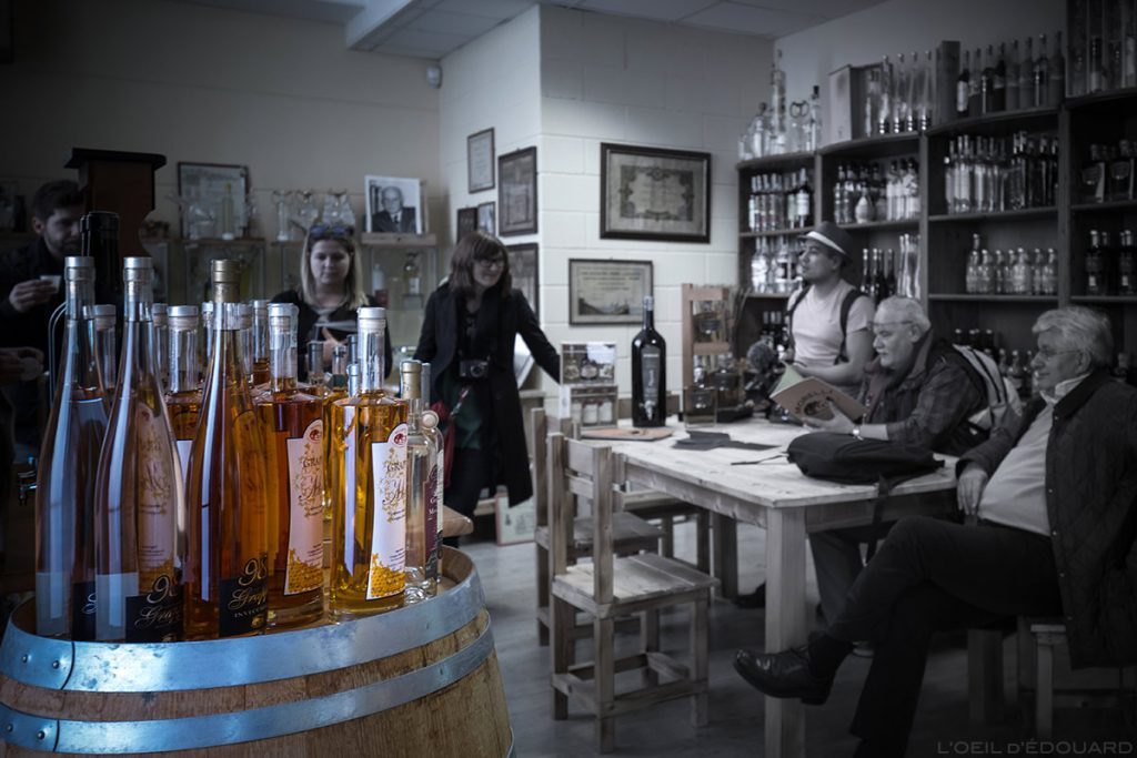 Dégustation d'alcools dans la distillerie Grapperia Morelli, Palaia (Valdera, Toscane) Gastronomie Italie