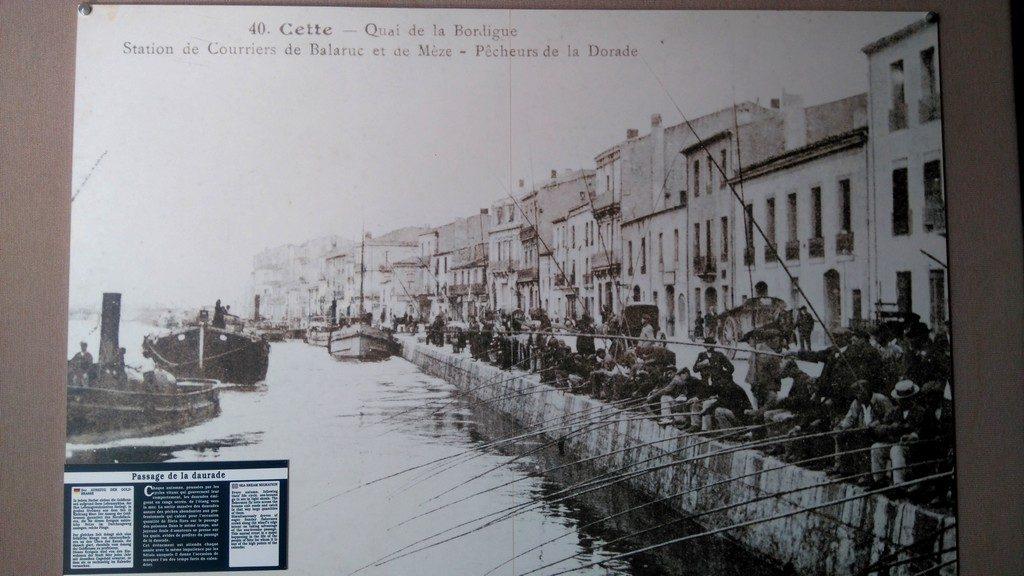 Musée de l'étang de Thau à Bouzigues, culture des huitres et histoire