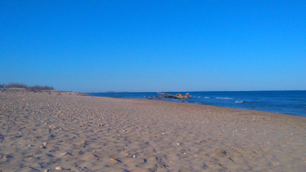 Tranquilité à la plage des aresquiers, plage nudiste, le long du canal du rhone à sete