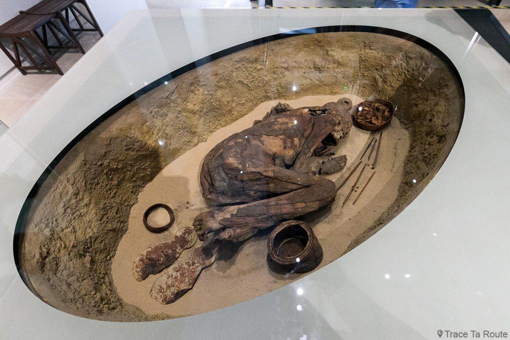 Momie - Visite du Musée Égyptien de Turin - Museo Egizio di Torino