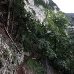 Sentier de randonnée vers La Chartreuse de Curière - Massif de la Chartreuse