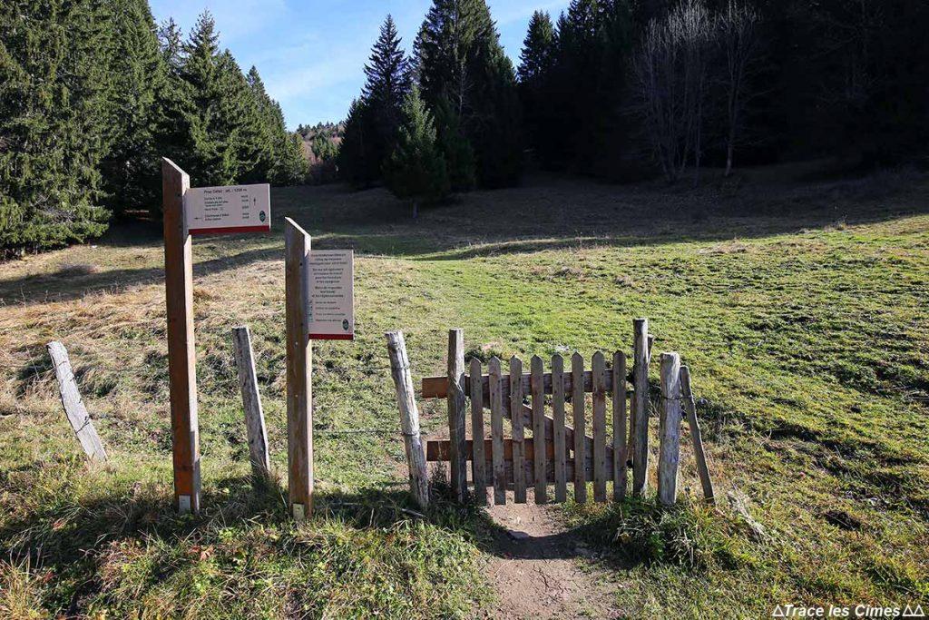 Sentier itinéraire randonnée Mont Colombier Parking Praz Gelaz, Massif des Bauges
