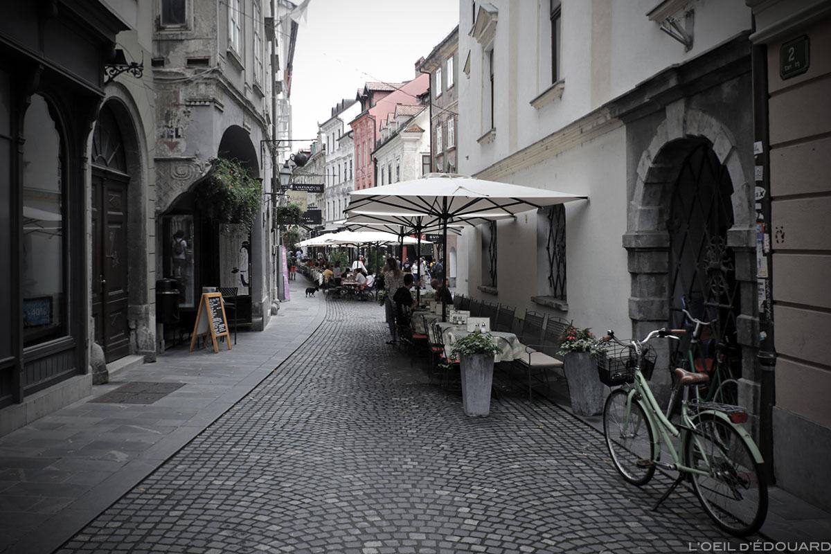 Rue piétonne Strari trg dans la vieille ville de Ljubljana, Slovénie