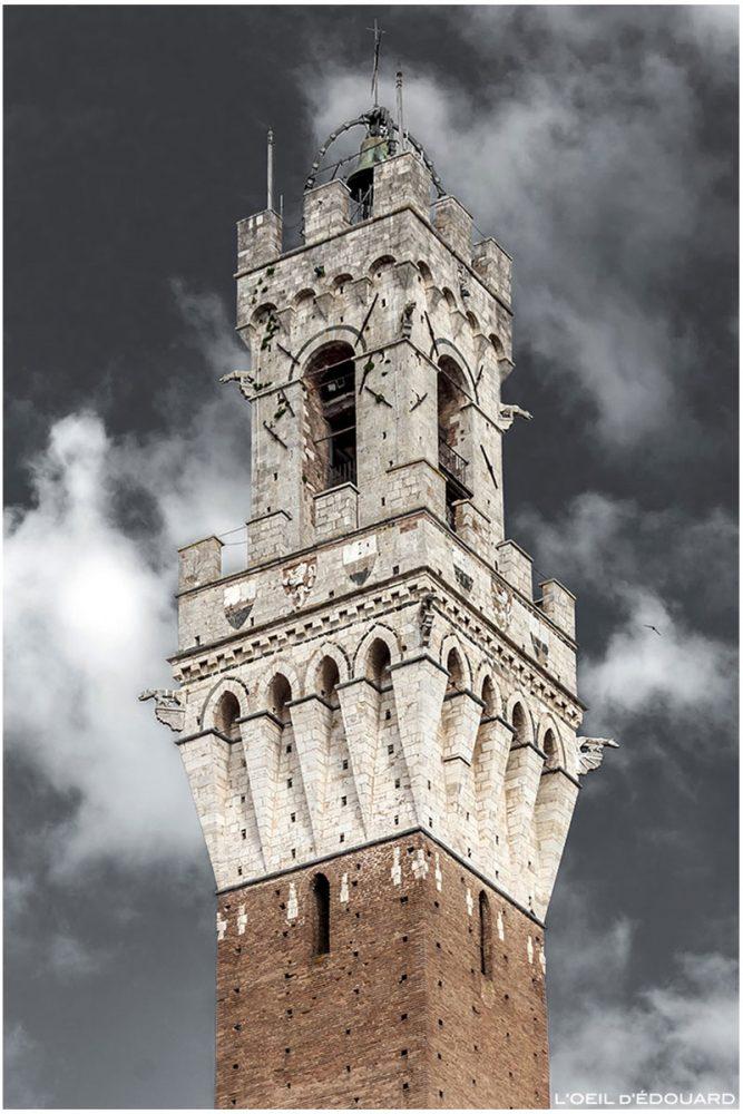 Campanile de la tour Torre del Mangia du Palazzo Pubblico de Sienne