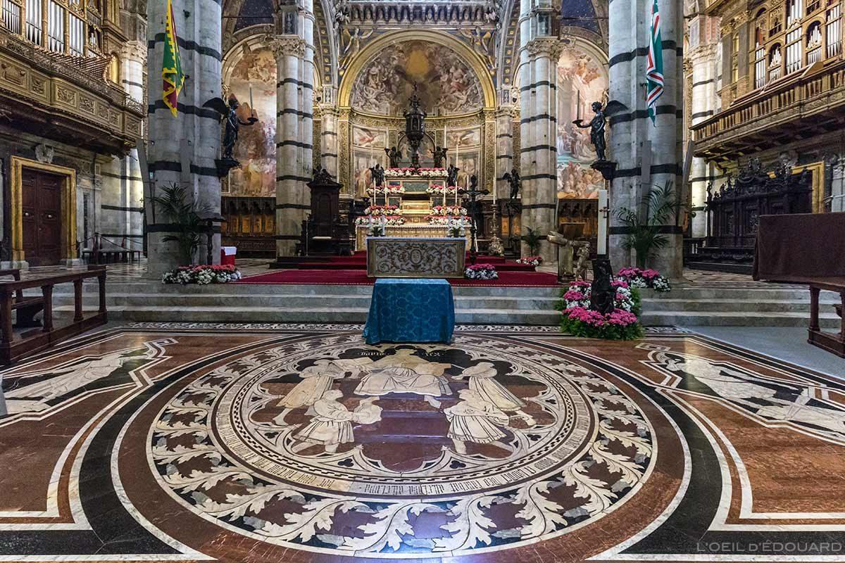 Choeur de la Cathédrale de Sienne - Pavement au sol pavé en marbre Duomo di Siena (Santa Maria Assunta) : Histoire de David, Domenico di Niccolò dei cori