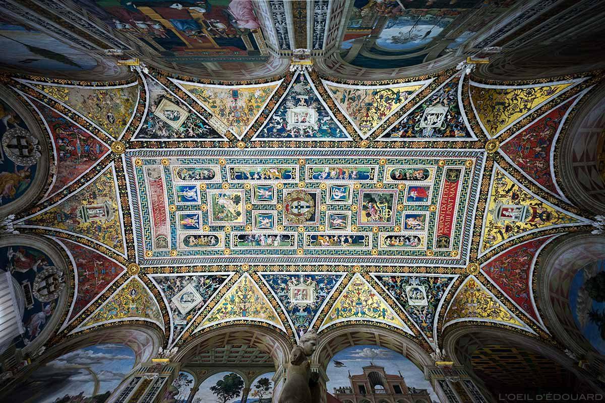 Plafond Libreria Piccolomini à l'intérieur de la Cathédrale de Sienne - Duomo di Siena (Santa Maria Assunta)