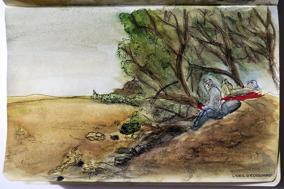 Bivouac à l'ombre des tamaris dans le désert du Maroc - Dessin et aquarelle © L'Oeil d'Édouard - tous droits réservés