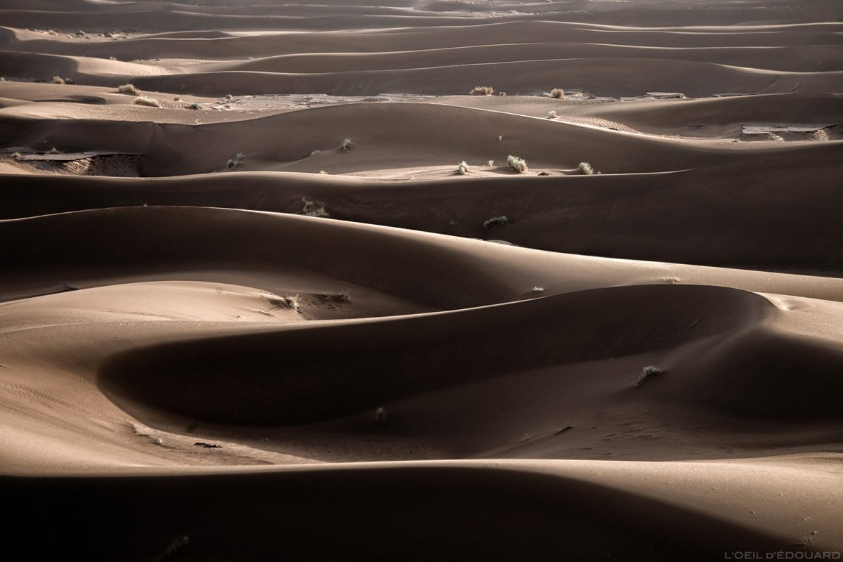 Dunes de sable dans le désert du Maroc