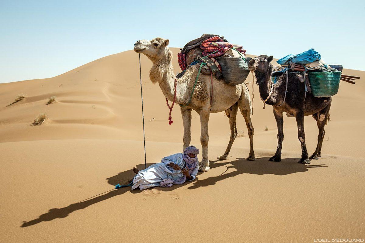 Nomade sahraoui et dromadaires dans le Désert du Maroc