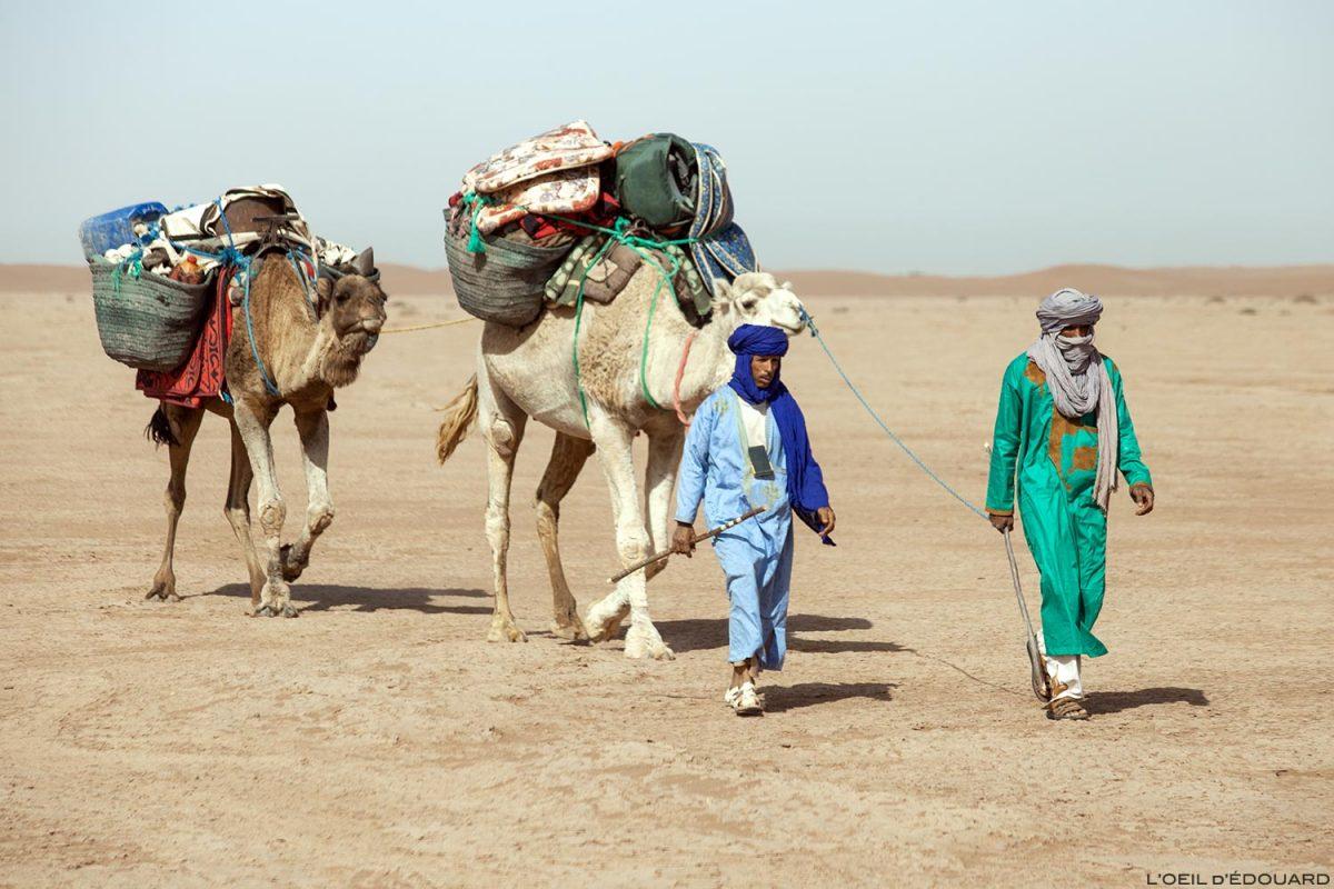 Caravane de dromadaires avec des nomades sahraouis dans le Désert du Maroc - Trek Mélodie du Désert