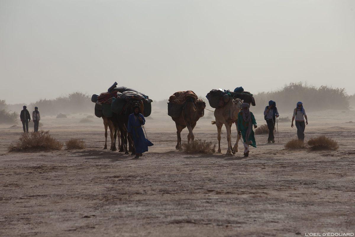 Caravane nomade durant une tempête de sable dans le Désert du Maroc