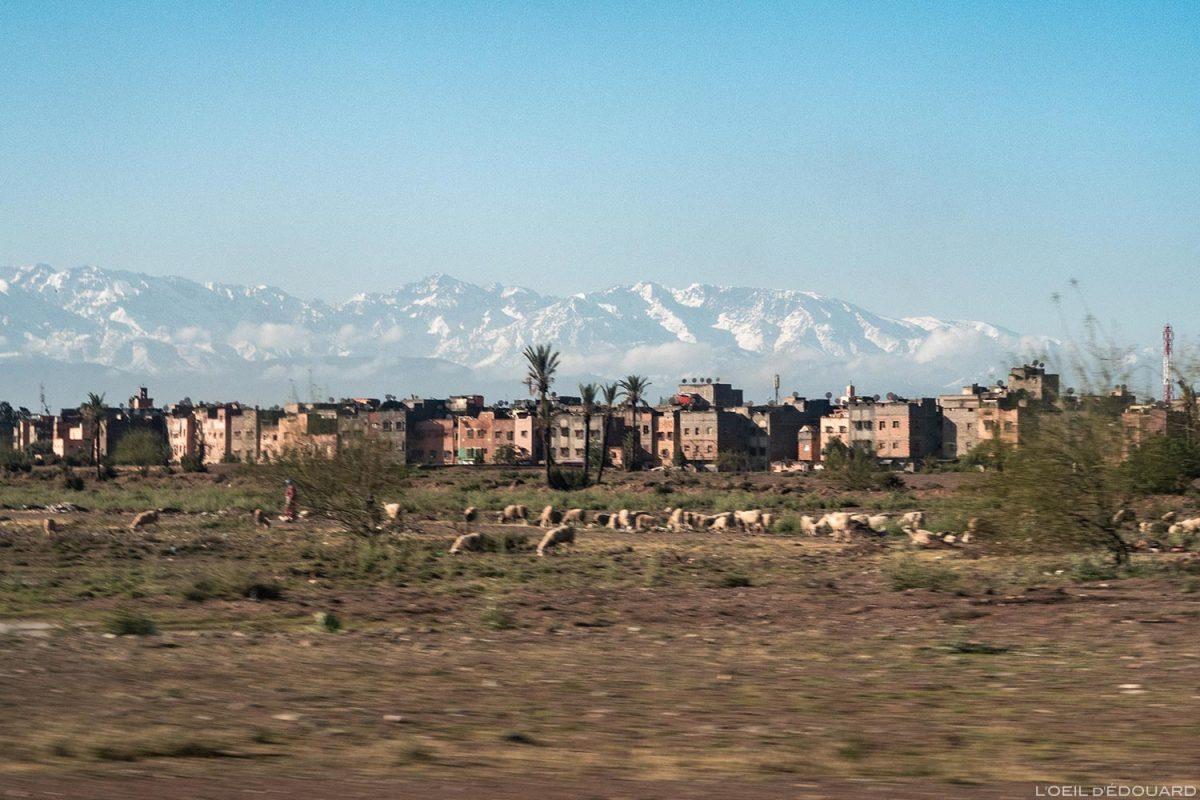 Montagnes de l'Atlas enneigées depuis Marrakech