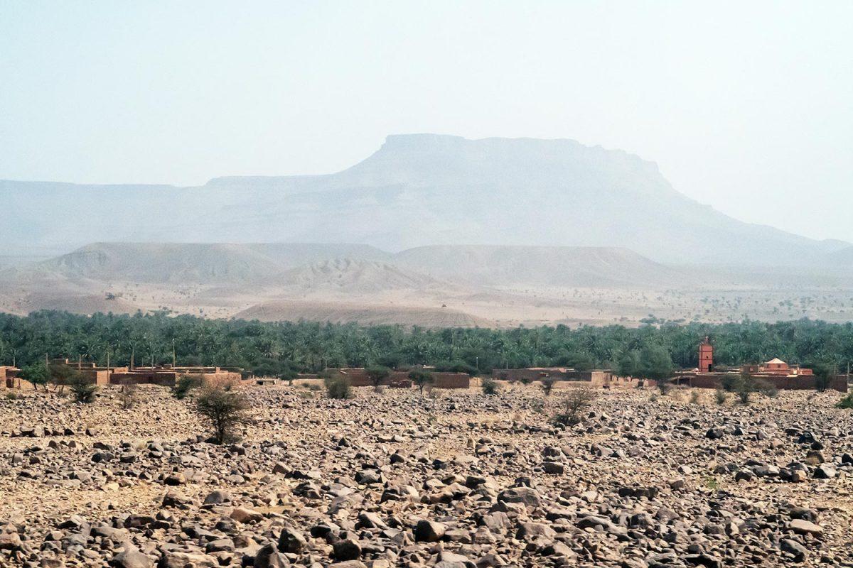 Palmeraie et montagne sur le bord de la route N9 dans la Vallée du Draâ, Maroc