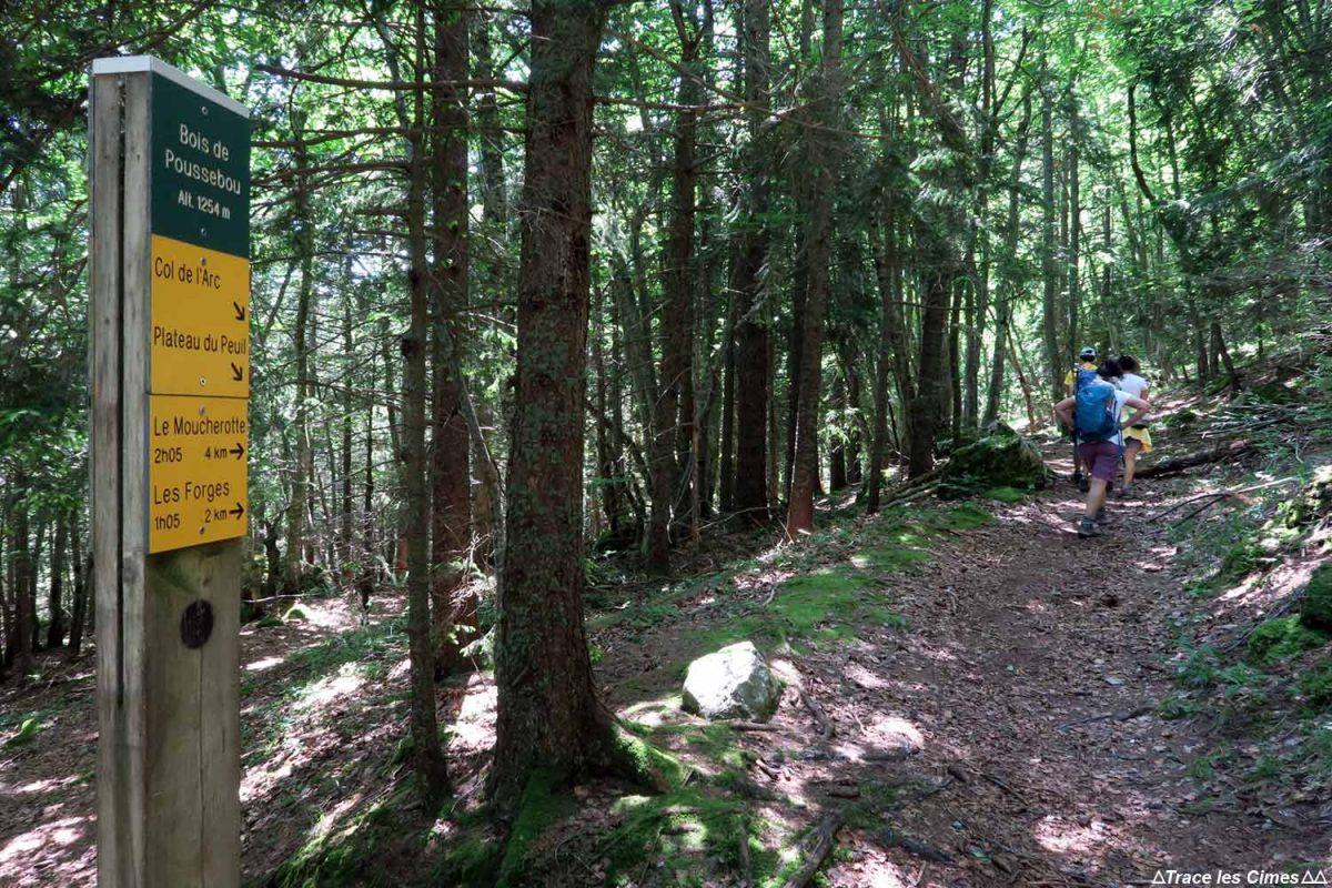 Randonnée Le Moucherotte, Bois de Poussebou