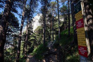 Sentier de randonnée Sous la Dent Gérard, Le Moucherotte
