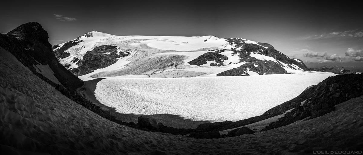 Alpinisme : le Glacier du Pelve et le Dôme de Chasseforêt - Glaciers de la Vanoise