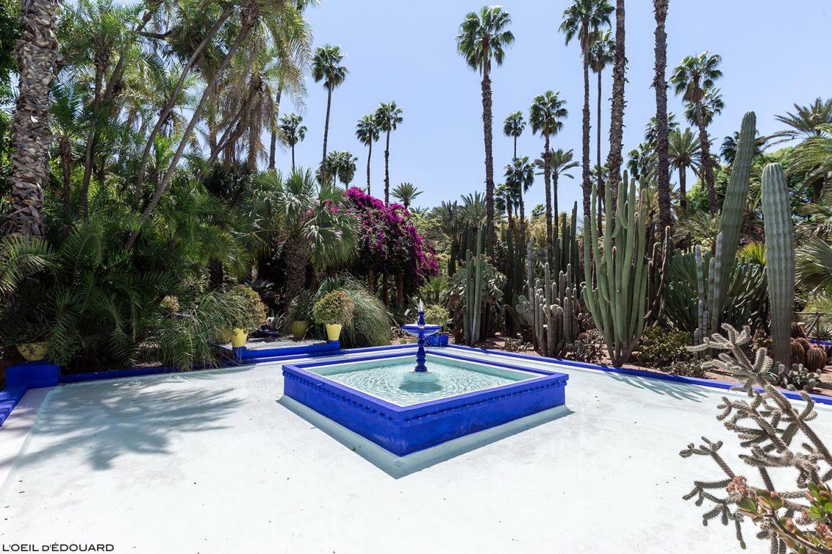 Bassin dans le Jardin Majorelle à Marrakech, Maroc / Visit Marrakesh Morocco