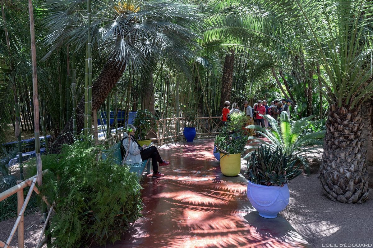 Jardin Majorelle à Marrakech, Maroc / Garden visit Marrakesh Morocco