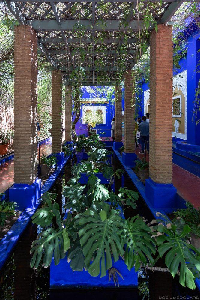 Pergola dans le Jardin Majorelle à Marrakech, Maroc / Visit Marrakesh Morocco
