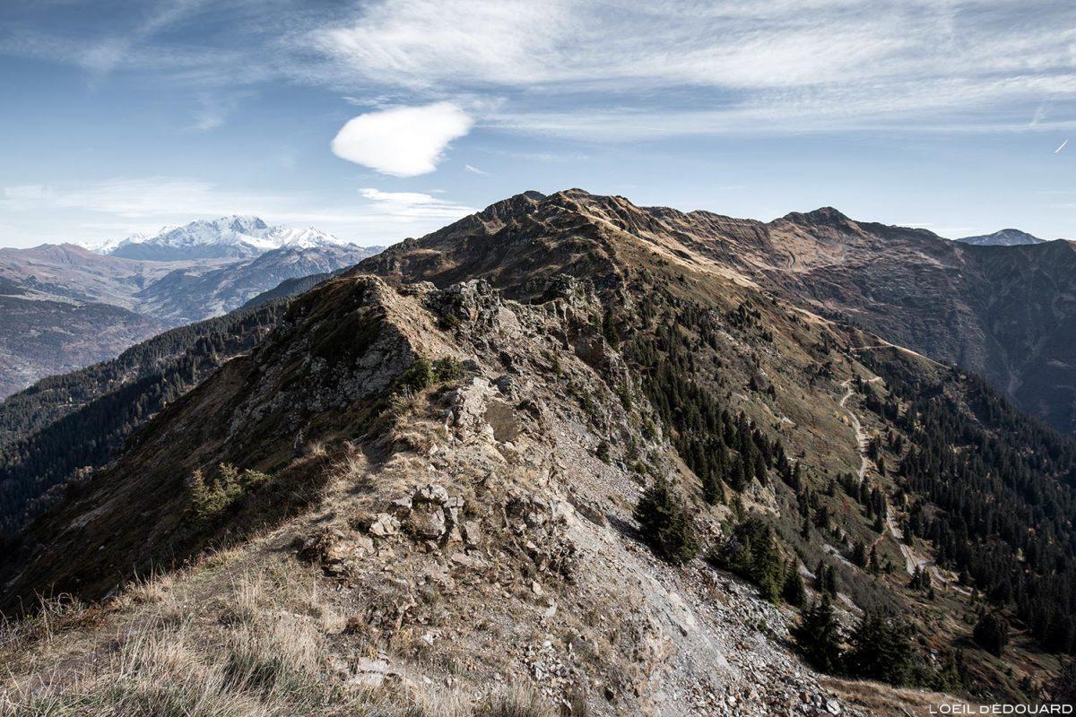 La crête de la Roche Pourrie avec le Mont Blanc