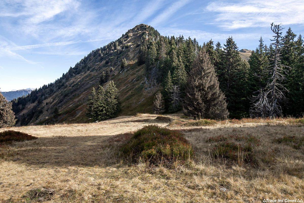 Le Géant du Petit Pré, randonnée à la Roche Pourrie - Massif du Beaufortain, Savoie