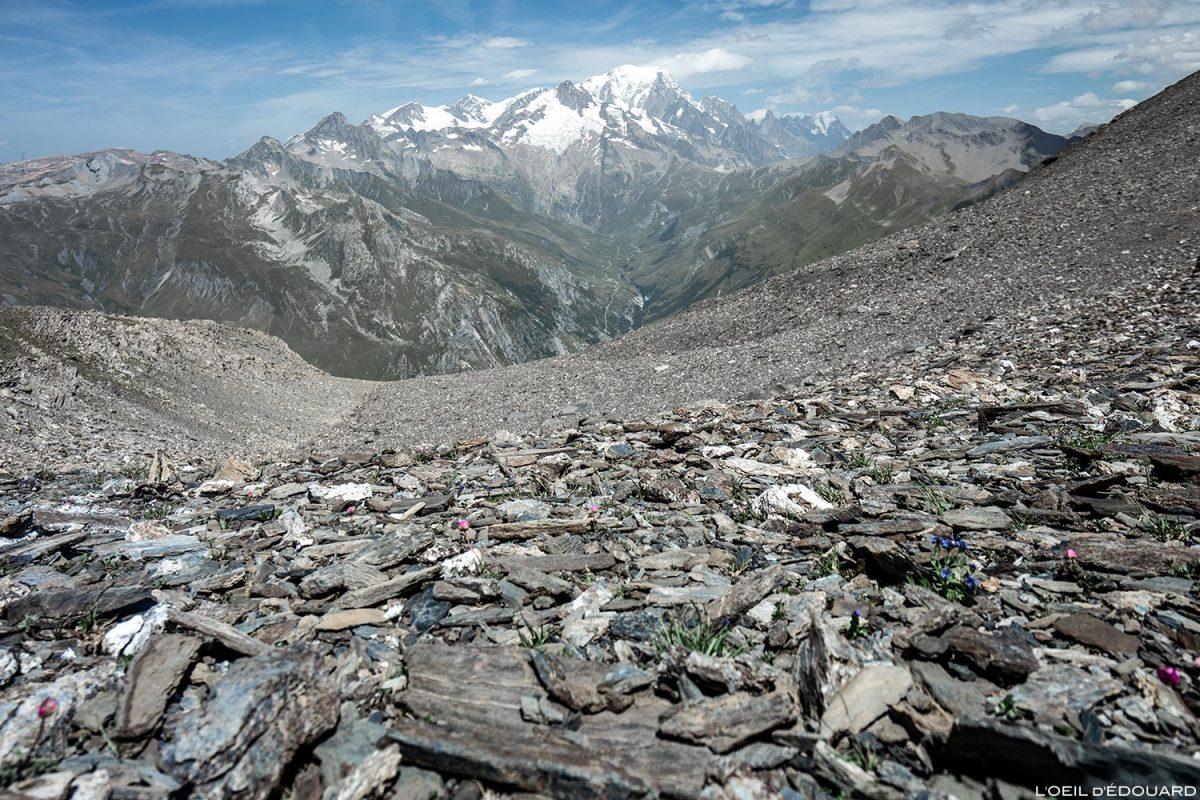 Le Mont Blanc depuis sous La Pointe de Pralognan, Le Beaufortain Savoie Paysage Montagne Alpes