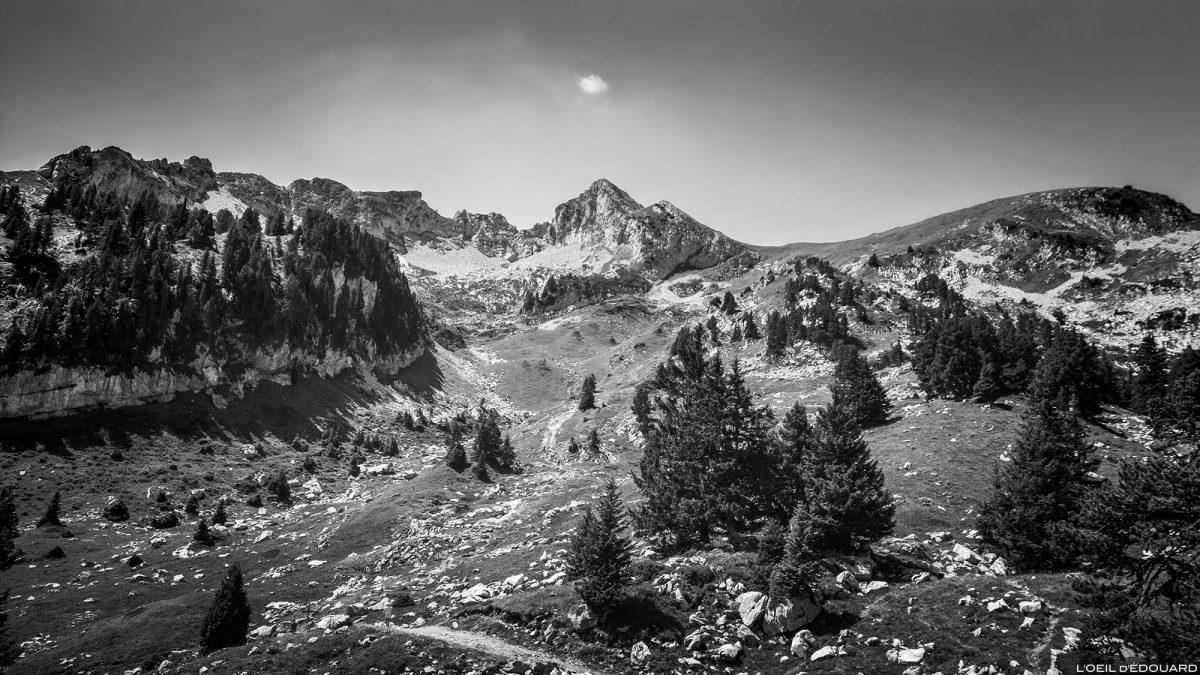 La Combe et la Pointe de La Sambuy depuis la station de ski de Seythenex, Haute-Savoie Alpes - Paysage Montagne Randonnée Alpes Outdoor Mountain Landscape Hike Hiking