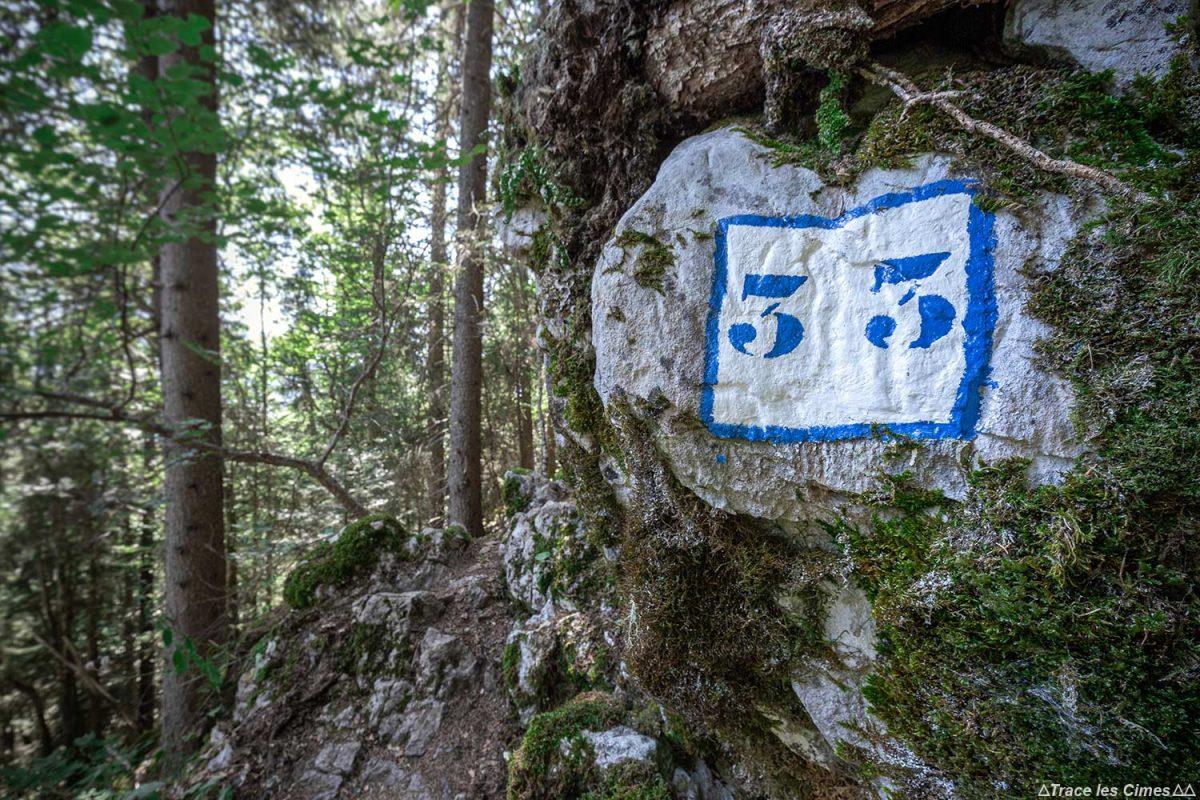 Randonnée La Sambuy par le Pas de l'Ours, Haute-Savoie Alpes - Forêt Montagne Alpes Outdoor Mountain Hike Hiking Forest