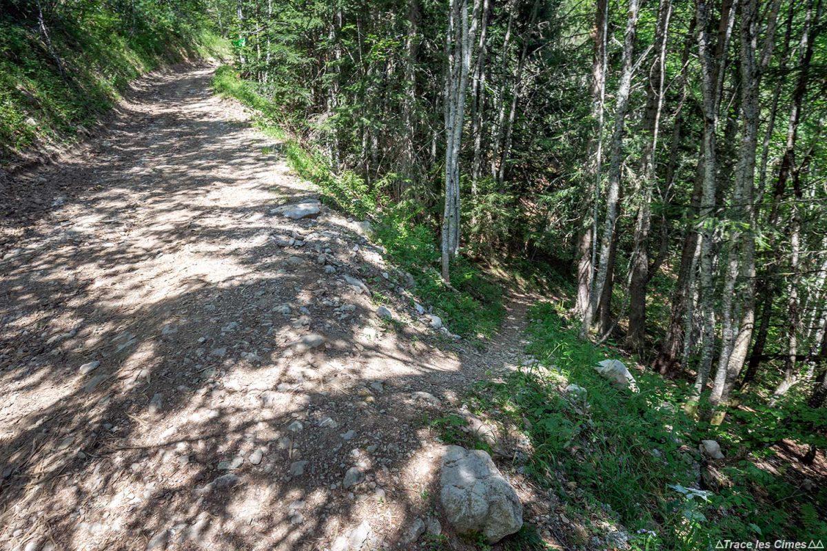 Sentier Randonnée La Sambuy Pra Fourrier, Haute-Savoie Alpes - Forêt Montagne Alpes Outdoor Mountain Hike Hiking Forest